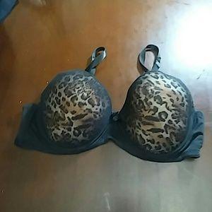 Other - Animal print bra. Nwot